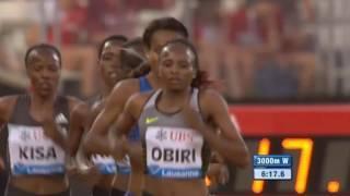 Genzebe Dibaba Victorious at Women's 3000m  IAAF Diamond League Lausanne 2016